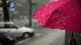 Siempre que llueve escampa